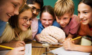 kids study brain